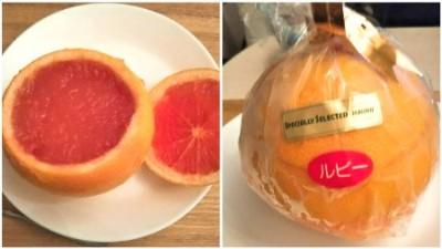 名古屋グルメ koboya フルーツゼリー