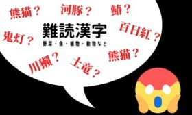 難しい漢字 果物